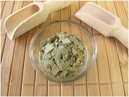 El eucalipto, remedio natural para problemas respiratorios
